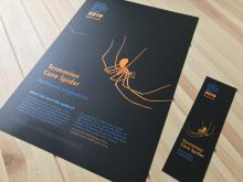 Cave Animal of the Year Posters and Bookmarks