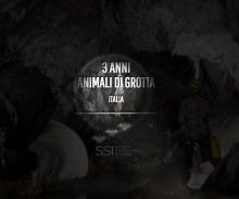 Italian Cave Animal of the Year Website screenshot